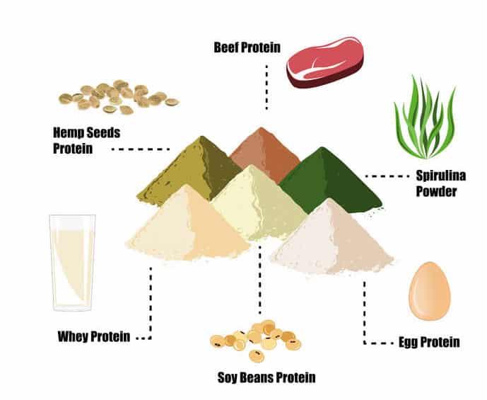Die verschiedenen Arten von Proteinpulver